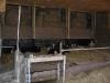 melkveehouderij-de-jong-39