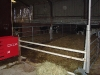 melkveehouderij-de-jong-10